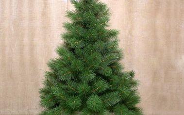 Vánoční stromeček borovice Douglas, v. 215 cm, HTH
