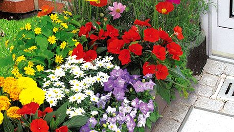 Podložka pro vypěstování záhonu se semeny