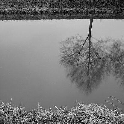 KURZ FOTOGRAFOVÁNÍ s digitální zrcadlovkou pro začátečníky. Kurzy vedou profesionální fotografové z FAMU