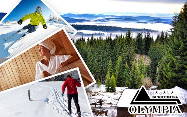 Zimní dovolená na Šumavě pro dva s polopenzí a fitness