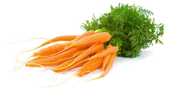 Mrkev obecná - 100 semínek a poštovné ZDARMA s dodáním do 3 dnů! - 5607392