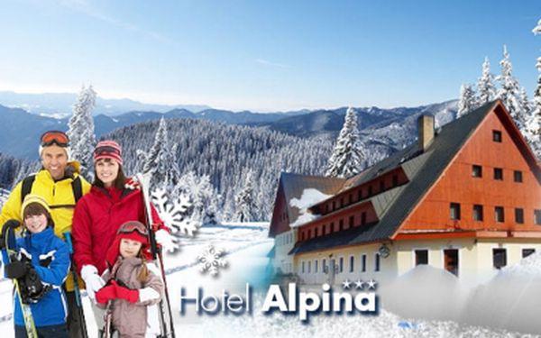Ubytování v komfortním Hotelu ALPINA*** ve Špindlerově Mlýně na 4 nebo 5 DNÍ včetně POLOPENZE a SAUNY již od 4900 Kč pro DVA! V ceně fotbálek, posilovna, billiard a balíček slev! Užijte si super dovolenou ve Špindlu se slevou 36%!