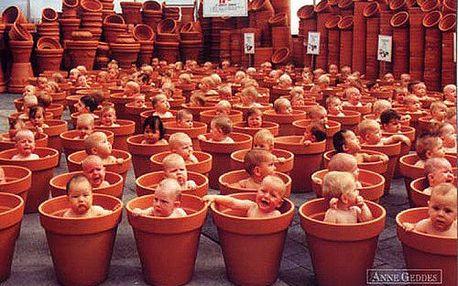 Pohlednice Anne Geddes 123 květináčů (62)