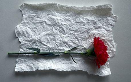 Jarní aranžování květin pro začátečníky