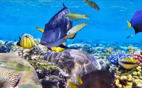 Egypt na 8 dní s all inclusive vč. vstupu do aquaparku zdarma v termínu 16- 23.2. Středisko Marsa Alam.