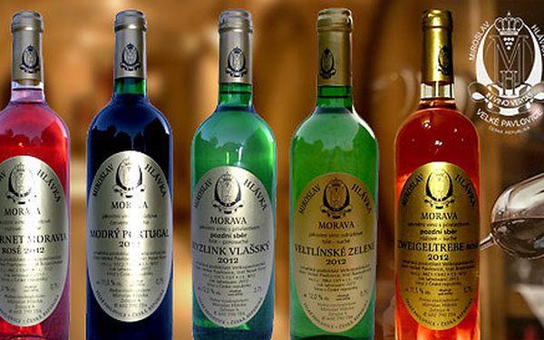 6 moravských vín z rodinného vinařství Hlávka