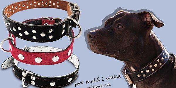 Kožený obojek Hand Made pro psy za výhodnou cenu