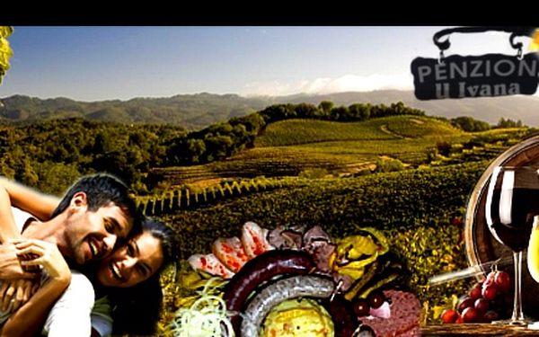 VINAŘSKÝ POBYT na 3 nebo 4 dny PRO DVA v samém srdci BOŘETIC v penzionu U IVANA pod Kraví horou se slevou až 42 %: Snídaně, degustace archívních vín, raut/zabijačka s neomezenou konzumací vína, stovky sklípků v okolí a nádherná příroda!