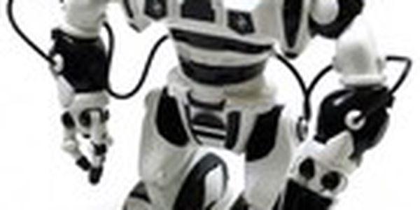Roboman NEW GENERATION - LIMITED 2013. První robot založený na robotice a biofyzice.