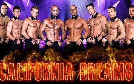 Pánská striptýzová show California Dreams