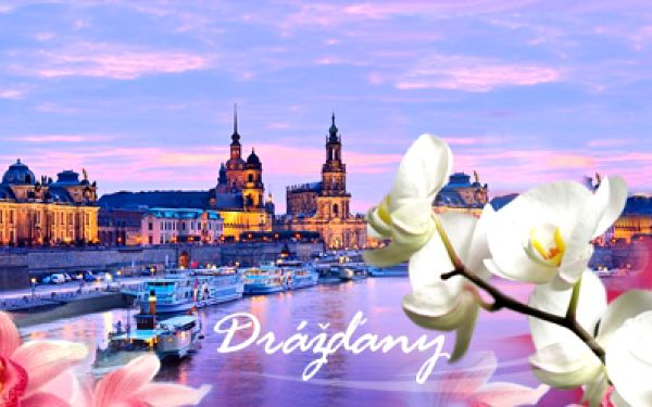 Německo! Jednodenní zájezd vlakem z prahy na výstavu orchidejí do překrásných drážďan již od 329 kč! Navíc romantická plavba lodí do pirny! Poznejte nádherné historické město drážďany s neodolatelnou slevou až 38%!