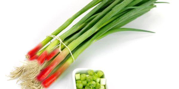 Rubínová cibule sečka Holand - balení 20 semínek a poštovné ZDARMA s dodáním do 3 dnů! - 8908043