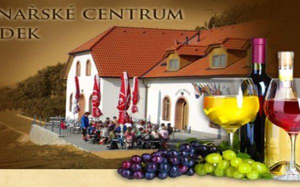 3 dny v hotelu Sádek*** u Třebíče pro 2, obklopeno vinohrady s polopenzí, vínem a masáží až do 30.6.