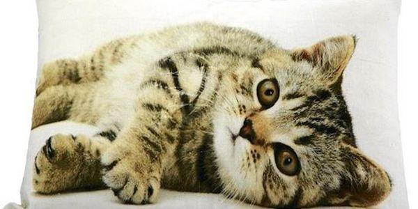 Polštář Cat 50x35 cm