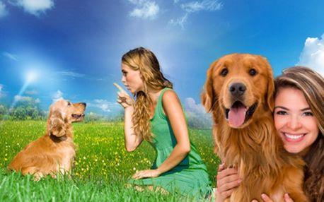 Máte doma psího kamaráda, který se dokáže občas změnit v chlupatého teroristu a potřebuje výcvik? Vyzkoušejte VÝCVIK PSŮ HROU! Voucher za 850 Kč zahrnuje celkem 10 lekcí, které lze libovolně čerpat po dobu 4 měsíců!