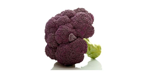 Brokolice fialová - balení 20 semen a poštovné ZDARMA s dodáním do 3 dnů! - 8208042