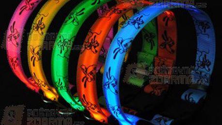 Svítící LED obojek pro domácí mazlíčky - na výběr z 5 barev a poštovné ZDARMA! - 10002584