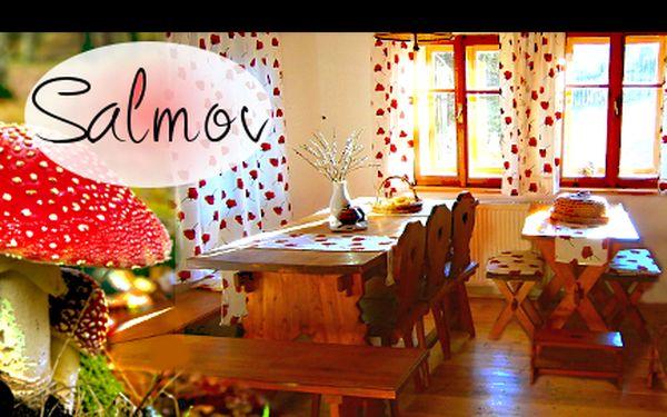 Romantika v lokalitě SALMOV v Českém Švýcarsku! Třídenní pobyt v HISTORICKÉ chalupě s krbem, rustikální světnicí a perličkovou lázní v jedno, dvou nebo třílůžkovém pokoji za 595 korun na osobu. Domácí mazlíčci vítáni!