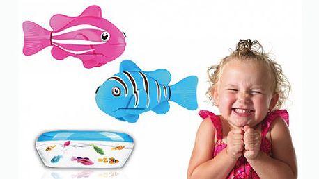 Robotická rybka se sama zaktivuje ve vodě, potápí se, plave do všech stran. Na výběr čtyři barevné provedení.