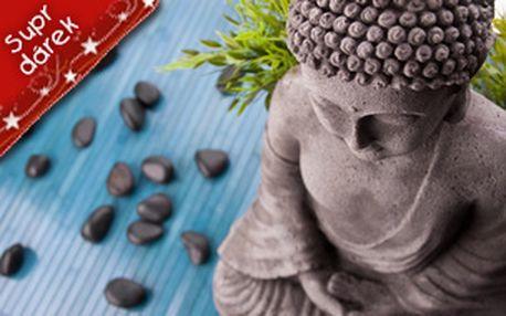 Kopie - Akupunktura pro domácí užití