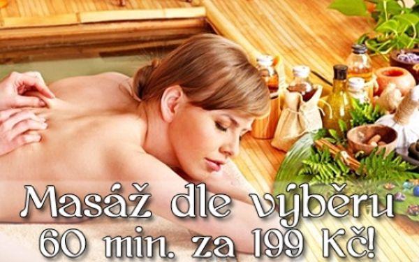 60 min. HAVAJSKÁ nebo KLASICKÁ MASÁŽ v oblíbeném studiu Malaxar. Odpočiňte si při fantastické havajské masáži, nebo nechte uvolnit své svaly a klouby klasickou masáží ve studiu v samém centru Brna.