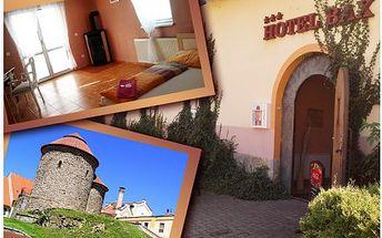 Tři dny na jižní Moravě v hotelu BAX *** s bohatou polopenzí, welcome drinkem a lahví výborného vína. V ceně je dále sleva na vstup do termálních lázní a poukázka na kozumaci do italské restaurace.