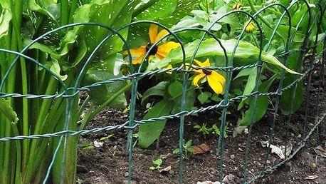 Pletivo okrasné - zelené