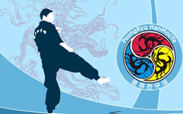 2 měsíce korejského bojového umění za 599 Kč! Víkedový kurz Punryu Hanmue!