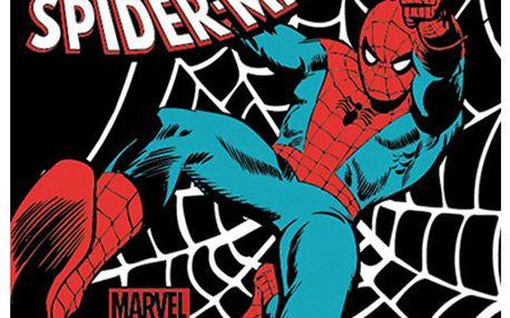 Set 6 tácků Spiderman