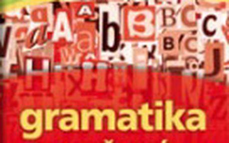 Gramatika současné ruštiny