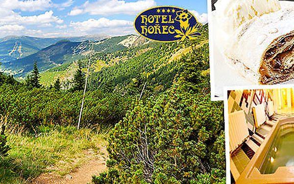 Odpočinek v horském hotelu Hořec v Krkonoších