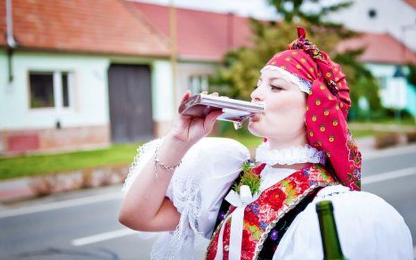 Pobyt ve sklípku v Bořeticích na jižní Moravě s neomezenou konzumací vína