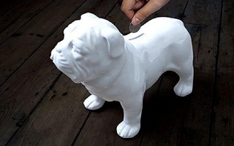 Porcelánový buldoček / kasička SUCK UK Bull Dog