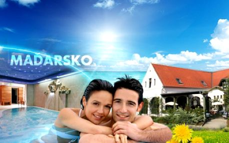 3* wellness dovolená v maďarsku! 4 dny pro dva s polopenzí a vstupem do termálních lázní hegykö sá-ra a hotelového wellness jen 6190 kč! Skvělý relax u neziderského jezera se slevou 52% a platnost voucheru 1 rok!