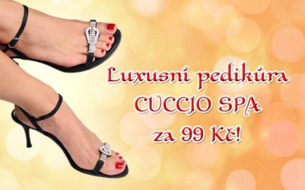 Luxusní ošetření nohou prvotřídní kosmetikou CUCCIO SPA! Kompletní voňavá PEDIKÚRA včetně změkčující lázně, peelingu, zábalu, relaxační masáže nohou a lakování! Připravte své nohy do letních bot díky profesionální péči v jedné z poboček studia Anabella!!