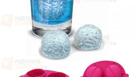 Forma na led - mozek a poštovné ZDARMA! - 13709723