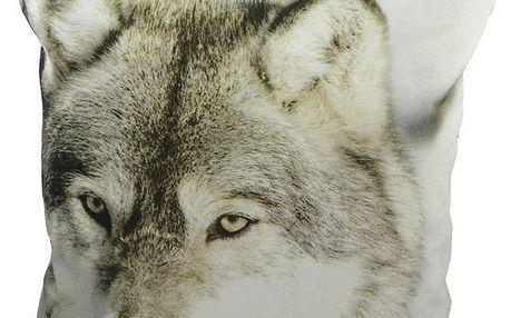 Polštář Winter Wolf 50x50 cm
