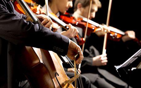 Koncert vážné hudby ve Smetanově síni