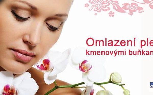 Revoluce v kosmetice, omlazení kmenovými buňkami s využitím bezjehlové mezoterapie. Nebojte se, příroda vám pomůže být zase mladá a krásná, dejte vráskám jednoduše STOP!