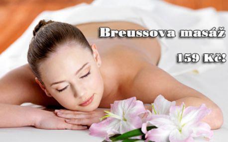 Léčivá BREUSSOVA MASÁŽ za senzační cenu! 45 minut samostatné masáže nebo 75 minut v kombinaci s reflexní terapií plosek nohou! Příjemná masáž od certifikované terapeutky s dlouhou praxí ve studiu Alternativa na Praze 10 ve Vršovicích!!