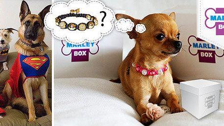Marley Box – balíček s překvapením pro psí miláčky