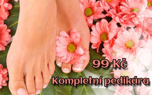 KOMPLETNÍ PEDIKÚRA včetně lakování barvou dle výběru! Vše pro krásu vašich nohou: mokrá pedikúra, relaxační koupel i ošetření hydratačním krémem! Studio Lužická v centru Prahy u stanice metra Náměstí Míru!!!!