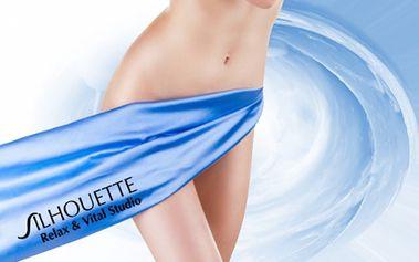 FOTOEPILACE TŘÍSEL - Bikini line jen za 204 Kč nebo brazilská depilace za 315 Kč! Dopřejte si hladkou pokožku na dlouho dobu díky profesionální IPL péči v oblíbeném luxusním studiu Silhouette přímo v Prahy u stanice metra Karlovo náměstí!
