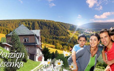 4 DNY s bohatou POLOPENZÍ v penzionu Jesenka jen za 990 Kč! Vyražte na rodinnou dovolenou do Krkonoš! Výhodná poloha v Peci pod Sněžkou! Vouchery platné do ŘÍJNA!