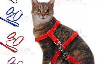 Barevné kšíry na kočky a poštovné ZDARMA! - 15410290