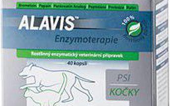 Alavis Enzymoterapie 80cps
