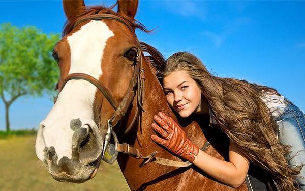 Hodinová vyjížďka na koni na Břeclavsku