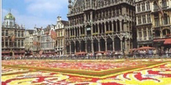 Brusel, společník cestovatele