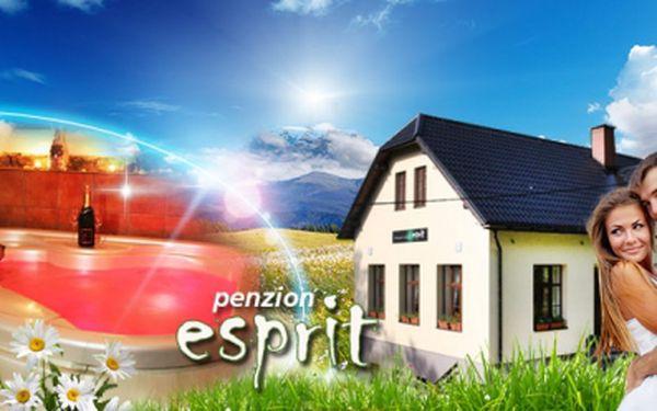 LUXUSNÍ 3 nebo 4DENNÍ dovolená PRO DVA v Pensionu Esprit s bohatou POLOPENZÍ, WELCOME DRINKEM, vstupem do VÍŘIVKY, SAUNY a dalšími WELLNESS procedurami za narozeninovou cenu od 1699! Přijeďte si zalenošit i zasportovat!