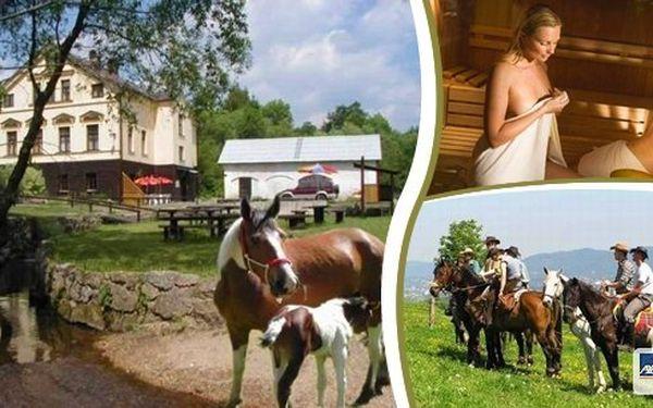 3 denní pobyt na Ranči U Potoka s polopenzí a wellnessem!! Zažijte dva dny jako pravý koňák na ranči!! Domácí kuchyně, každou sobotu uzený, kýta na rožni a country zábava!!